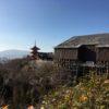 京都探訪記② 京アニ~三十三間堂・清水寺